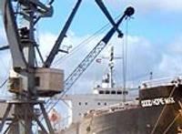 В июле грузооборот Лиепайского порта возрос по сравнению с прошлым годом