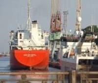 Занялись экспортом каминных дров