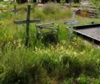 На южном кладбище трава по пояс