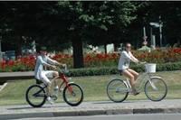 Поездки на велосипеде собирают много участников