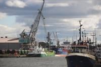 Коалиция одобрила налог на порты, сборы пойдут на ремонт дорог