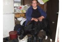 Пострадавшему хозяйству дарят коров