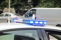 Подозреваемый пытался отбиться от полиции с помощью гарпуна