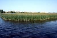 Общество будет изучать озера Курземе