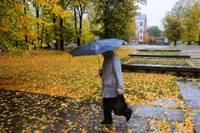 Нынешняя осень была теплее нормы