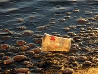 Пассивные «пловчихи» обессилили