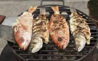 Торговцам предлагают записаться на рыбный праздник