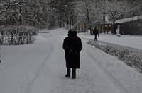 В холода медики призывают сограждан обращать внимание на пожилых людей