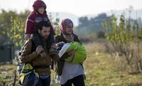 УДГМ: в прошлом году статус беженцев в Латвии получили 29 человек