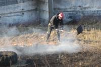 Поджигают старник, сгорел садовый домик