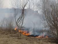 Сгорело пять садовых домиков