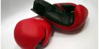 Боксеры побывали в ближайших соседних странах