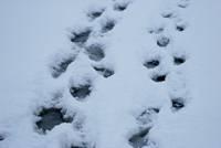 С понедельника начнутся морозы до -14 и неблагоприятный тип погоды