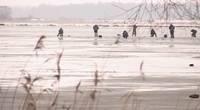 Вытащили первого утонувшего в этом году в Латвии человека