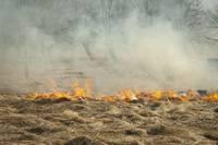 Тушат пожар, снимают кольцо и ликвидируют последствия аварии