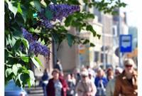 Численность населения Латвии в прошлом году сократилась на 0,7%