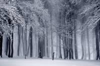 Следующая неделя может стать самой холодной этой зимой