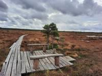 Природные тропы из-за вируса еще не закрыты; недоступны лишь маяки