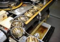 Остановлена хозяйственная деятельность рыбоперерабатывающего предприятия «Kolumbija LTD»
