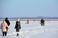 Стремительно уменьшается толщина льда