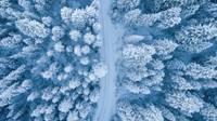 Впервые за четыре года температура в Латвии опустилась до -30 градусов
