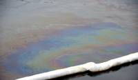 Латвия получила компенсацию за нанесенный окружающей среде урон от разлива нефти