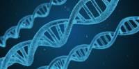 Что означает присутствие в организме антител после вакцинации?