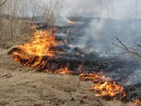 На улице Круму горит прошлогодняя трава