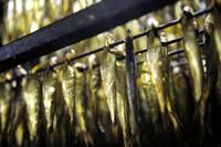 Надежда на возрождение Лиепайского рыбоперерабатывающего завода