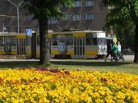 Покупатель старых трамваев не объявился